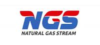 """Разработка логотипа для компании """"Natural Gas Stream"""""""