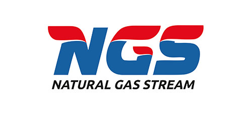 "Разработка логотипа для компании ""Natural Gas Stream"""